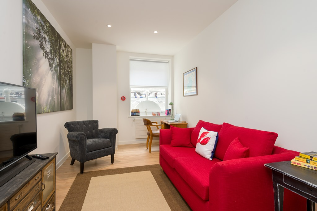 Central London one bedroom apartment - sofa bed