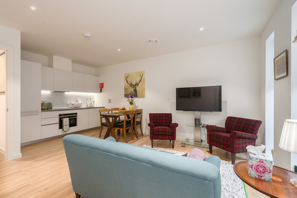 One bedroom apartment - living area with flat screen TV - london central apartment